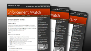 Enforcement Watch - Issue 15: January 2015