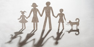 Practice area focus: Family law